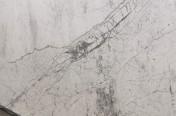 Bianco Carrara Grigio Marble Slabs
